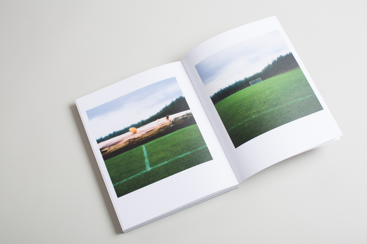 Forest Pitch photo
